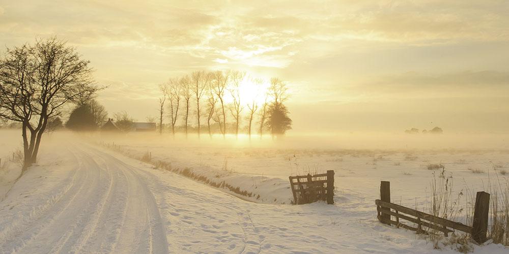 Den Winter willkommen heissen