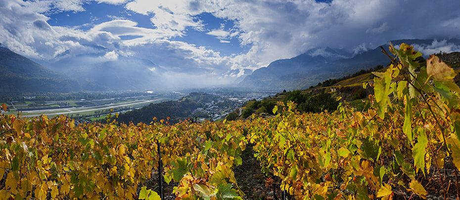 Entdecke das Schönste der Schweiz