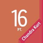 16 punti