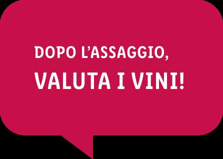 Dopo l'assaggio, valuta i vini!